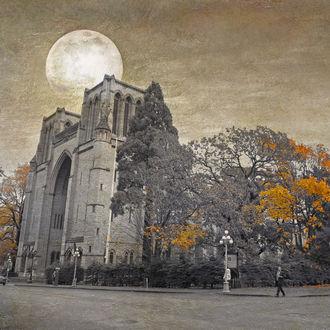 Фото Готическая церковь под полной луной осенью и деревья с желтыми листьями