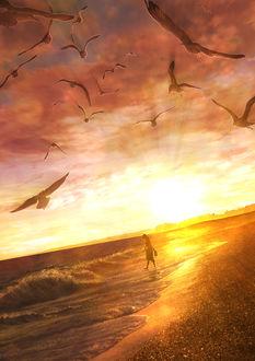 Фото Девушка на морском берегу во время заката, by Kupe