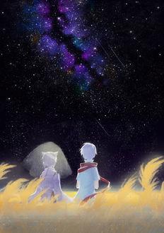 Фото Девушка-лисица в фате и белокурый парень в красном шарфе сидят в поле на фоне ночного неба, млечного пути и падающих звезд