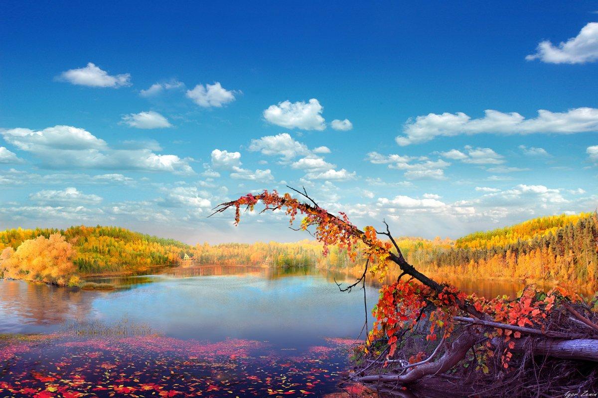 Фото Осень на озере под облачным небом, фотограф Igori Zenin