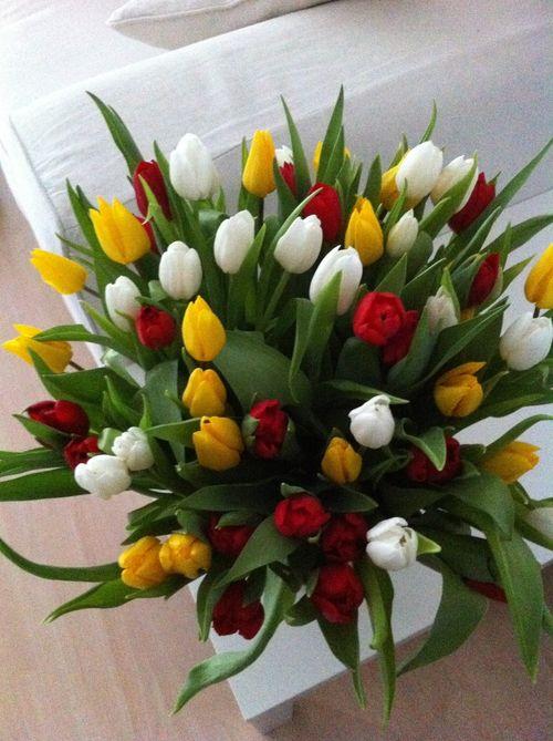 Букет из желто белых тюльпанов