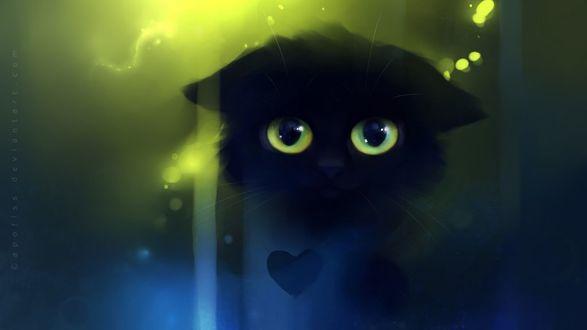 Фото Грустный черный котенок, by Apofiss