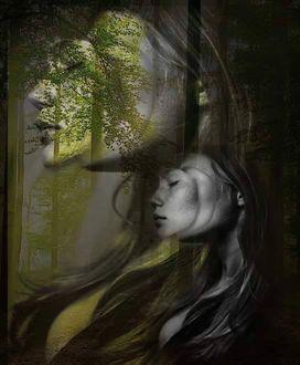 Фото Профиль девушки на фоне деревьев