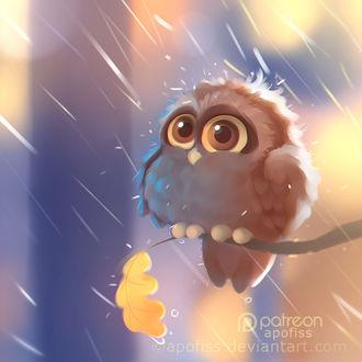 Фото Сова сидит на ветке под дождем, by Apofiss