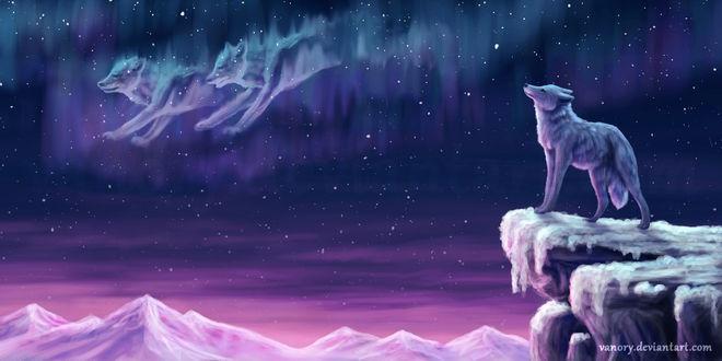 Фото Волк смотрит на северное сияние, по которому бегут двое духов-волков, by Vanory