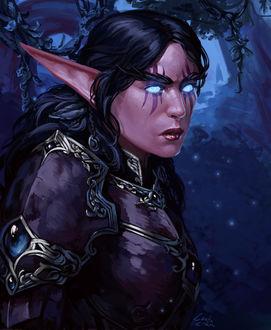 Фото Ночная эльфийка в доспехах / арт на игру World of Warcraft, by Darantha