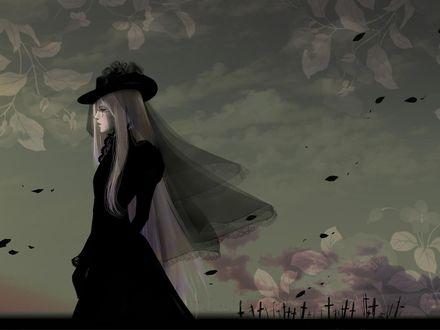 Фото Интегра Фэйрбрук Уингейтс Хеллсинг / Integra Firebruk Wingeints Hellsing в трауре на фоне серого неба над кладбищем из аниме Hellsing / Хеллсинг