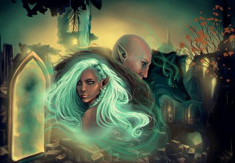 Фото Эльфийка, эльф и волк на фоне разрушенного города / арт на игру Dragon Age, by mappeli