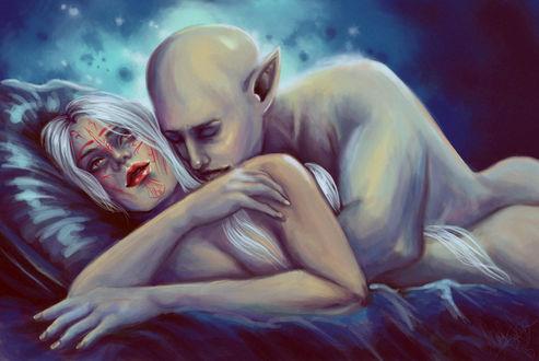 Фото Обнаженные эльфы обнимаются / арт на игру Dragon Age, by mappeli