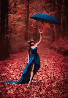 Фото Девушка с синем платье с зонтом в руке идет по осенней аллее, фотограф Светлана Беляева