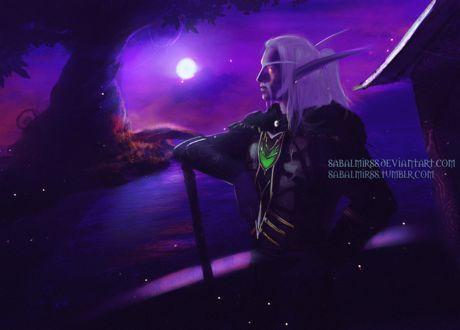 Фото Ночной эльф друид / арт на игру World of Warcraft, by Sabalmirss