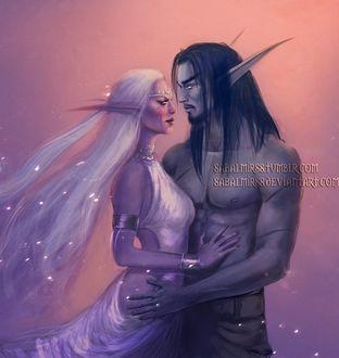 Фото Malfurion Stormrage / Малфурион Ярость Бури и Tyrande Whisperwind / Тиранда Шелест Ветра - персонажи игры World of Warcraft, Sabalmirss