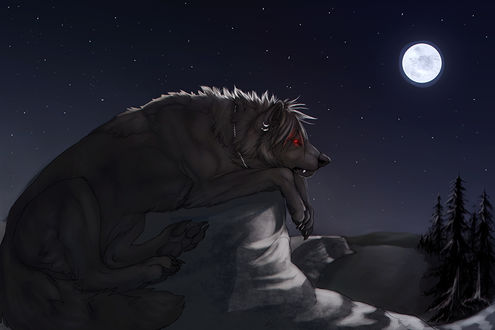 Фото Волк - оборотень тоскливо смотрит на полную луну