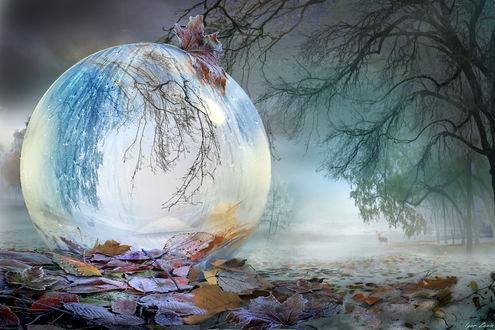 Фото Работа под названием-Ноябрь, фотохудожник Игорь Зенин