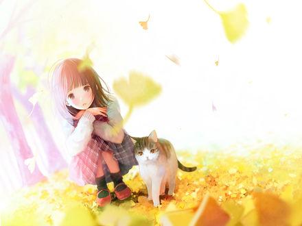 Фото Девочка и кошка на осенней листве