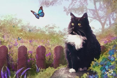 Фото Черно-белая кошка в саду среди цветов на фоне голубой бабочки, by Emeraldus