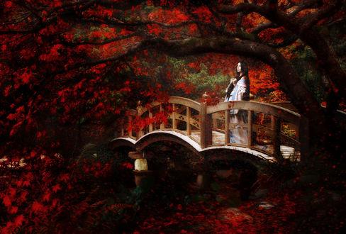 Фото Девушка в кимоно стоит на мосту у пруда, под деревом с красными листьями / Косплей персонажа японского фольклора Юки-онна / Yuki onna, модель Shen, by RiperJack