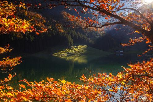 Фото Швейцарские Альпы осенью, фотограф Andrew Bazanov