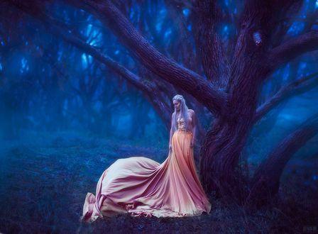 Фото Девушка в длинном розовом платье стоит у дерева, фотограф Светлана Беляева