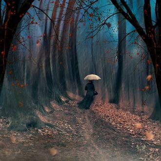e198d10def3 Фото Женщина с зонтом идет по осенней дорожке