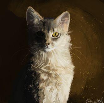 Фото Белый кот, by SafulousArt