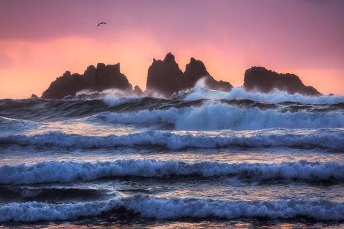 Фото Волны под розовым небом, фотограф Daniel F