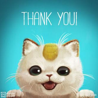 Фото Мяут / Meowth из аниме Покемон / Pokemon говорит Thank you! / спасибо, by JaimeQuianoJr