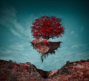 Фото Девушка сидит у дерева на летящем островке, фотограф Светлана Беляева
