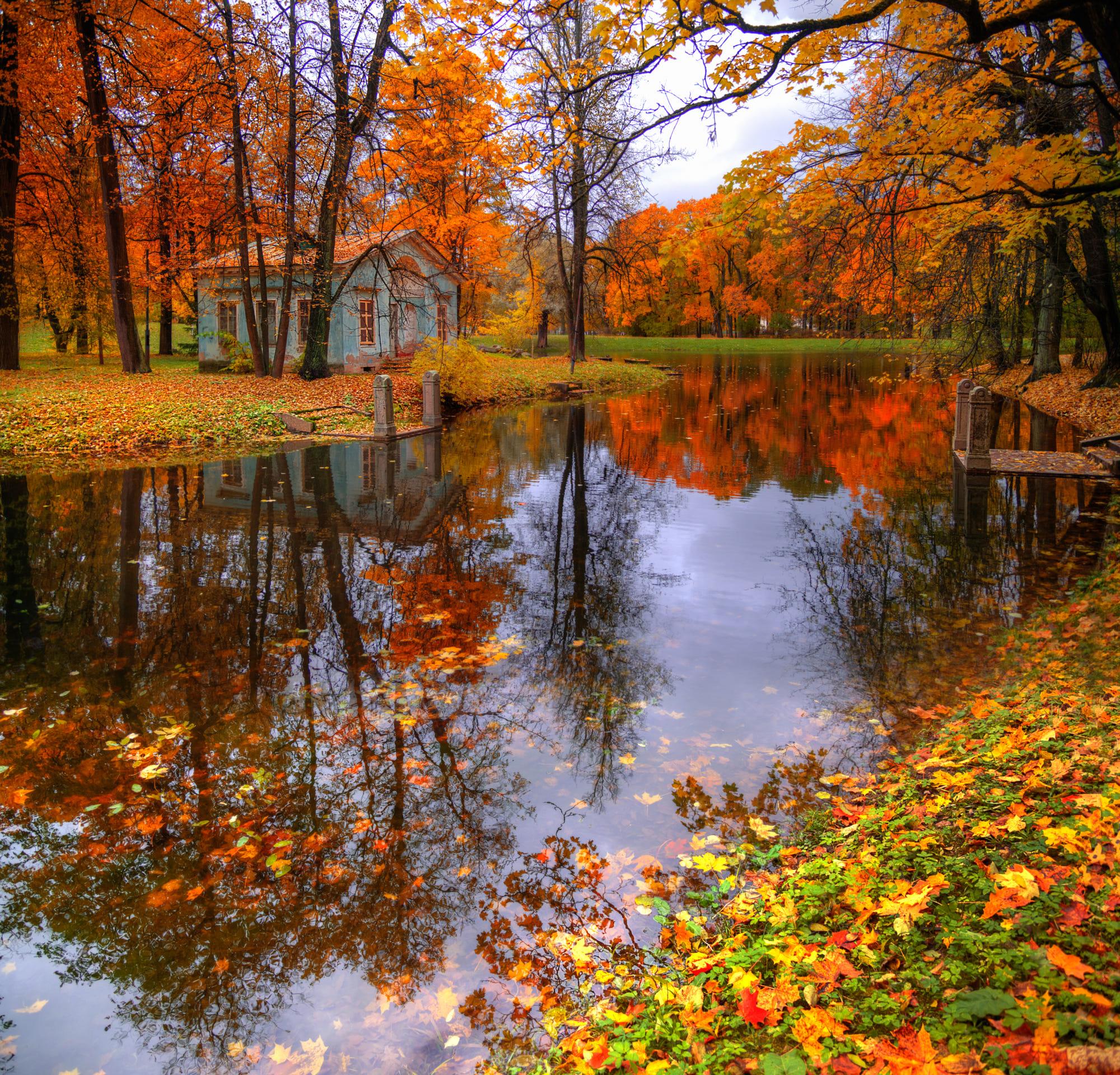 Фото Царское село осенью, Санкт-Петербург, октябрь, фотограф Гордеев Эдуард