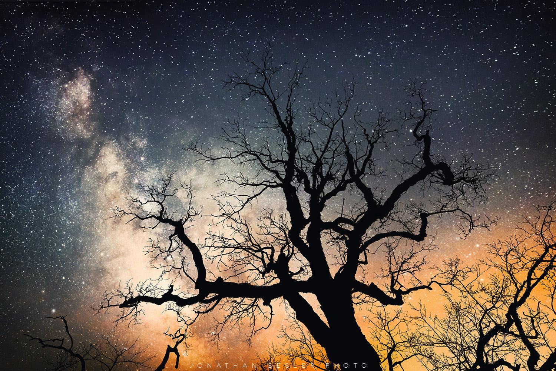 Фото Дерево на фоне ночного звездного неба, Hinterstein, Germany / Хинтерштейн, Германия, фотограф Jonathan Besler