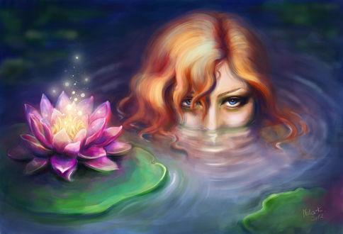 Фото Рыжеволосая девушка выглядывает из воды в пруду, рядом со светящейся кувшинкой в ночи, by NelEilis (© Мася-тян), добавлено: 05.12.2017 19:27