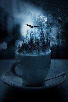 Фото Чашка, в которой ели под ночным небом, в котором парит птица