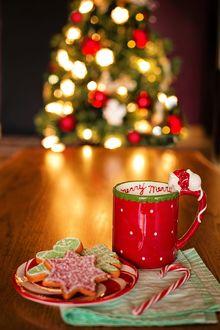 Фото Чашка и блюдце с новогодними угощениями на фоне сияющей елки