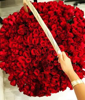 Фото Девушка держит корзину красных роз