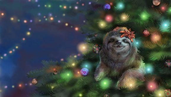 Фото Ленивец с бантиком на голове сидит в новогодней елке, by Irbisty