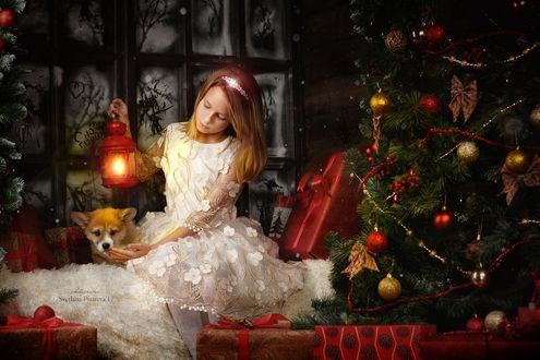 Фото Девочка, с фонарем в руке и щенком хаски рядом с ней, сидит около елки и подарков. Фотограф Светлана Писарева