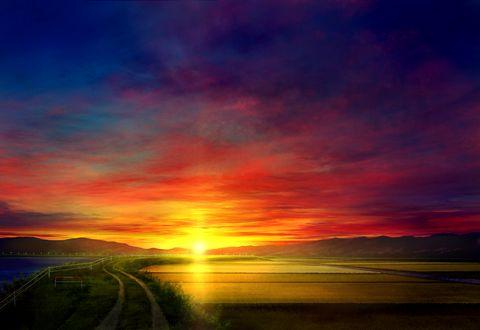 Фото Дорога, с одной стороны которой рисовые поля, с другой море, на фоне заходящего солнца, by mks