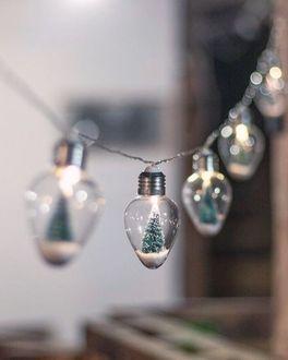 Фото В лампочках гирлянды новогодние елочки