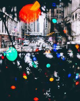 Фото Через окно, украшенное к празднику еловыми ветками с гирляндой, видна оживленная улица города