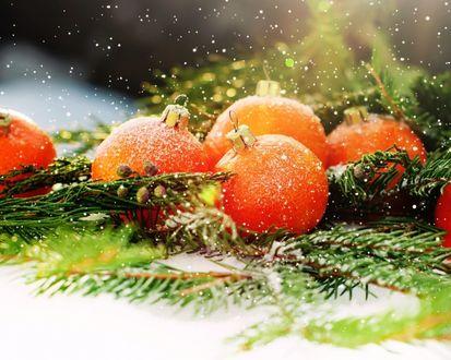 Фото Новогодние шарики оранжевого цвета на еловых ветках под падающими снежинками