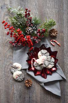 Фото Новогодние печенья в звездообразной тарелке, веточка елового дерева и красные ягоды в букете, покрытым инеем, by oh hotcakes