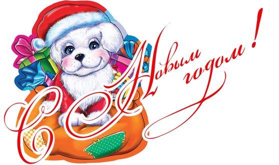 Фото Белый щенок в новогоднем колпаке сидит у подарков, (С новым годом! )
