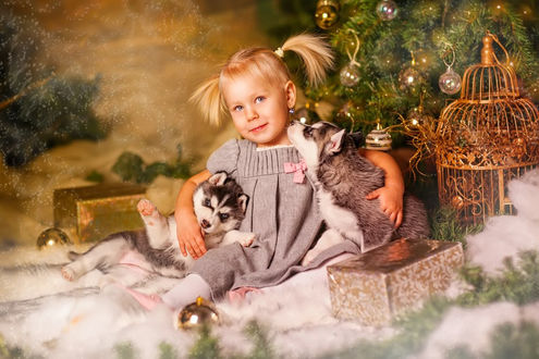 Фото Девочка под елкой с щенками хаски, фотограф Татьяна Мусская