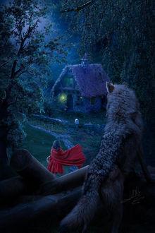 Фото Волк смотрит на Красную Шапочку, идущую по тропинке к дому бабушки, by Energiaelca1