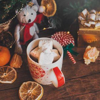 Фото Кружка с маршмеллоу, мандарины, леденец, подарок и плюшевый мишка на столе