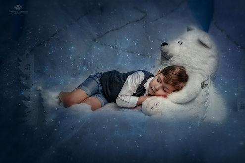Фото Мальчик, спящий в новогоднюю ночь, рядом с мишкой, фотограф Любовь Махиня