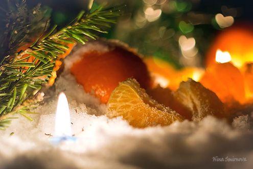 Фото Мандарины рядом с еловой веткой и горящей свечей в снегу, фотограф Нина Смирнова