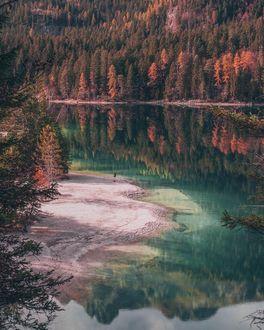 Фото Человек на берегу озера осенью