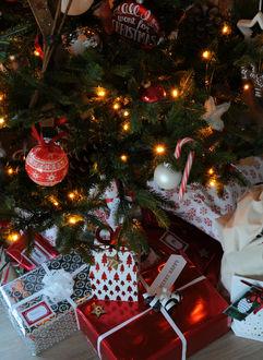 Фото Упакованные новогодние подарки уже лежат под украшенной новогодней елкой