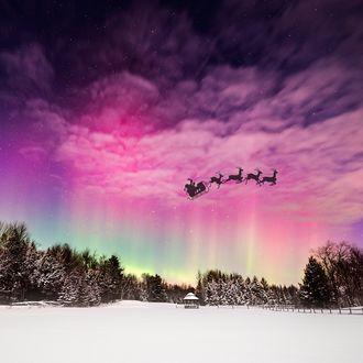 Фото Санта Клаус летит на санях в упряжке с оленями, на фоне ночного неба с розовыми облаками и северным сиянием, над зимней природой